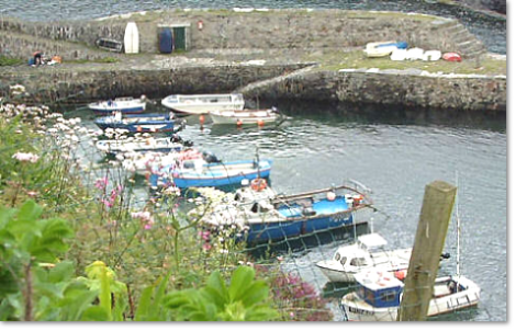Boats Moored at Boscastle Harbour